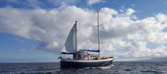Mit St Hilda Sea Adventures exklusive Abenteuer an Bord erleben