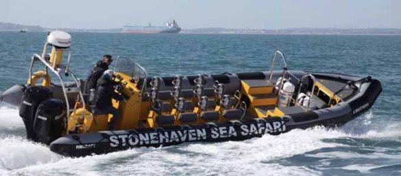Stonehaven Sea Safari bietet unvergessliche Bootsausflüge an der schottischen Ostküste