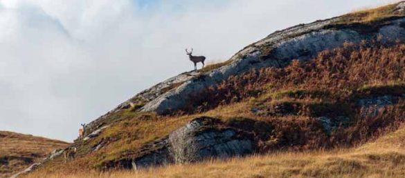 Der Kalender Scotland - Land of Whisky 2020 wurde von Michael Schmidt zusammengestellt
