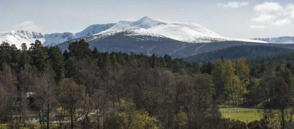 Als zweiter Nationalpark Schottland wurde der »Cairngorms National Park« im Jahr 2003 seiner Bestimmung übergeben