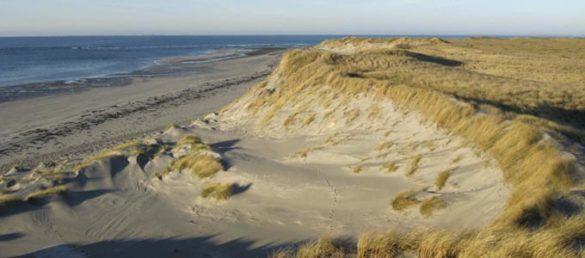 Einsame Strände findet man auch auf den vielen kleinen Inseln auf den Äußeren Hebriden