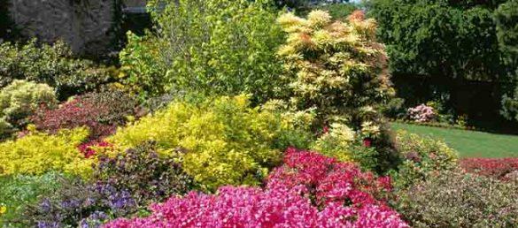 Geilston Garden in Dumbarton bietet seinen Besuchern die Schönheit eines kleinen Gartenjuwels