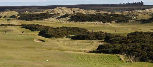 Golf kann man in der Region Aberdeen City & Shire auf insgesamt 54 Plätzen spielen