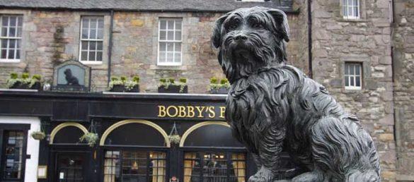 Der schottische Hund Greyfriars Bobby wurde zu einer Legende in Edinburgh