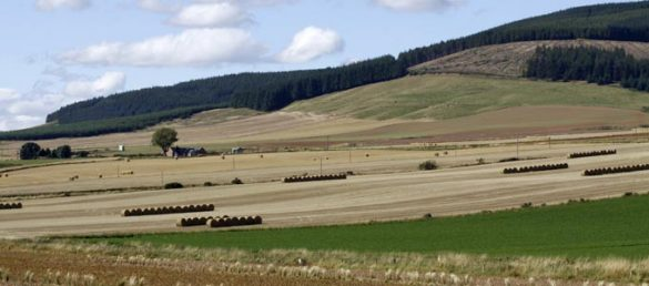 Die Trennlinie zwischen Highlands und Lowlands nennt man »Highland Boundary Fault«