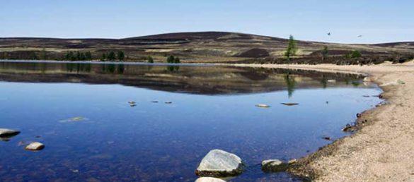 Der führende schottische Reiseveranstalter Rabbie's Small Group Tours wurde mit dem hochdotierten »Queen's Award for Enterprise« ausgezeichnet