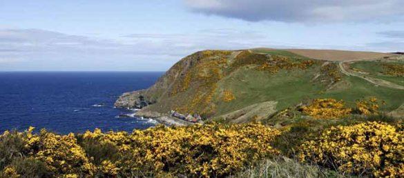 Das renommierte National Geographic Magazine hält die Südküste des Moray Firth für eine der schönsten Küsten der Welt