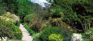Arduaine Garden liegt etwas südlich der Hafenstadt Oban in Argyll an der Westküste Schottlands