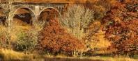 Der Herbst in Schottland verwandelt viele Landesteile durch besondere Lichtstimmungen in zauberhafte Landschaften