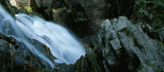 Ein Tagesausflug von Rabbie's ab Edinburgh führt zu den Lochs und Glens in den Highlands sowie zum Whisky