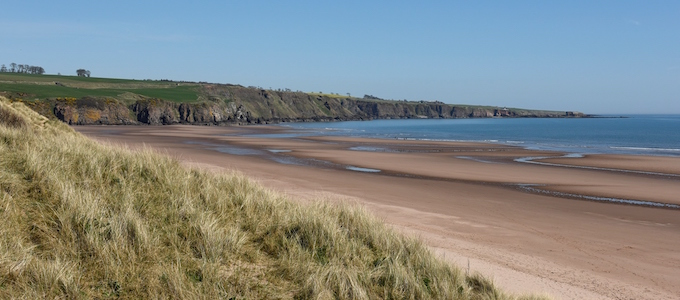 The Angus expert Olwyn Jack asks the question where and what exactly can be found in Angus