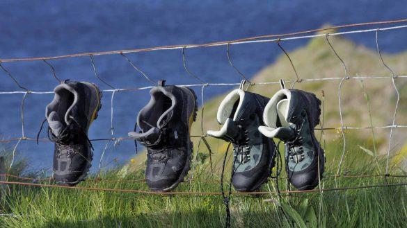 Der WildGuide Schottland ist ein aktueller Reiseführer in die Natur